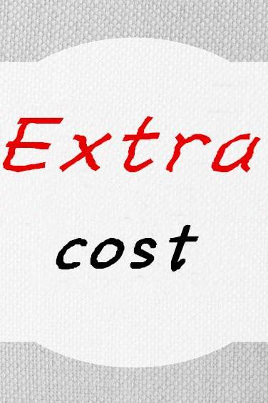 Extra Cost/Dress Changes/Rush Order